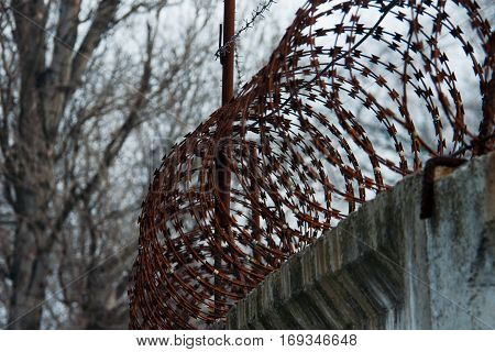 Barbed wire with a concrete fence on the background of trees