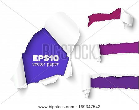 Realistic vector torn paper with ripped edges. Torn page banner for web and print. Damaged torn paper for design.