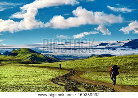 man hiker on the trail in the Islandic mountains. Trek in National Park Landmannalaugar, Iceland. valley is covered with bright green moss