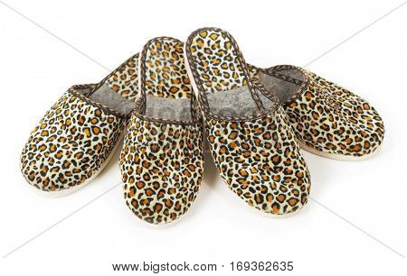 Slippers isolated on white