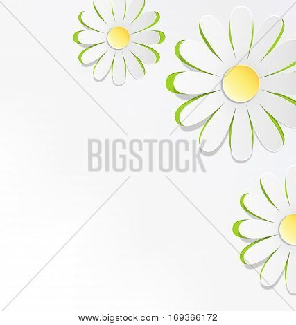 Three cutout chamomiles on grayscale. Floral spring abstract background