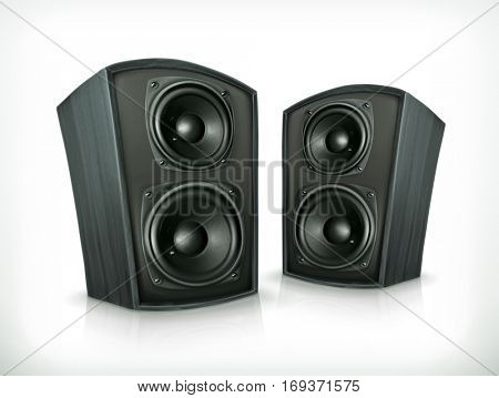 Acoustic speakers in plane wooden body icon. Raster copy