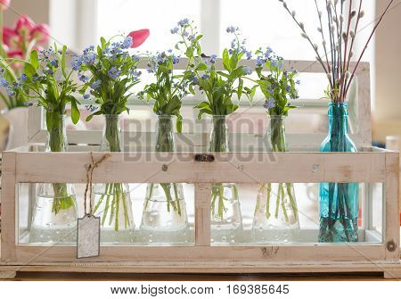 Beautiful bouquets of blue and pink colors in glass vases. Spring flowers for home interior. Nice bunches of forget me not and tulips in glass vases near a window. Decoration for spring.