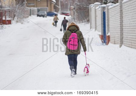 DNEPR UKRAINE - DECEMBER 03 2016:Schoolgirl walking with small dog on a snowy street in Dnepr Ukraine at December 03, 2016