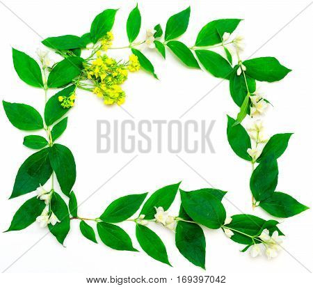 Wreath With Jasmine Flowers And Leaves And Yellow Flowers