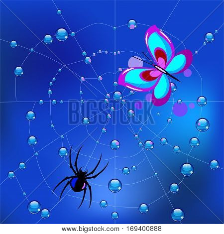 Vector Illustration. Spider on the net, blue colors. Water drops and one butterfly