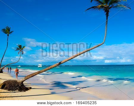 The view of the Caribbean Sea and coconut palms and white sand of the tropical beach of Punta Cana, Dominican republic