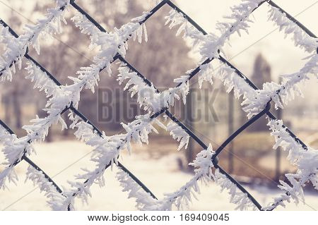 Wire mesh fence covered with frost and hoarfrost.