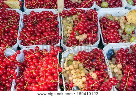 Red currant berries for sale at a market in Berlin