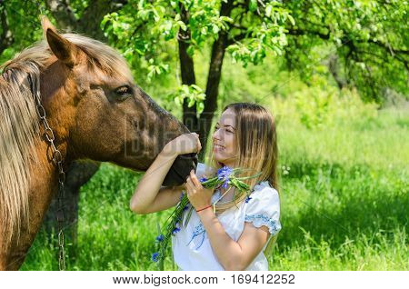 Beautiful girl with wreath of cornflowers in hands hugs muzzle of bay peasant horse and laughs