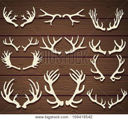 Set of deer antlers on the wooden rustic background