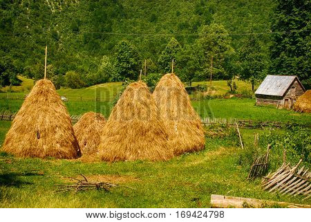 Summer rural landscape with haystacks in small village, Montenegro