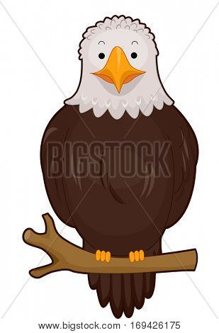 Illustration of a Cute Bald Eagle Resting Peacefully While Perched on a Branch