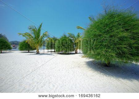Malibu beach at Koh Phangan Island, Thailand, Asia