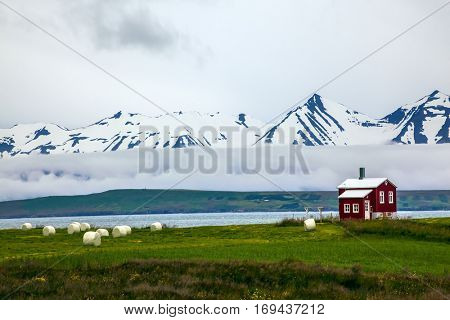 The fjord in Iceland. The mountains are covered with snow and small farm with red walls  on banks of the fjord.  The concept of extreme northern tourism