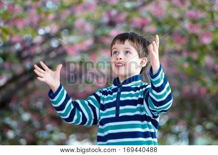 Cute little boy playing outdoors on beautiful spring garden