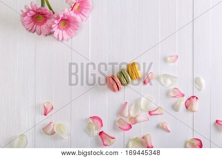 Macaroon cakes with pink rose petals and Gerbera flowers. Different types of macaron. Colorful almond cookies. On white wooden rustic background.