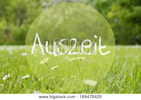 German Text Auszeit Means Downtime. Spring Or Summer Gras Meadow With Daisy Flowers. Blurry Trees As Background.
