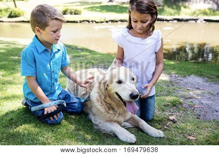 Siblings patting their pet dog in the park on a sunny day