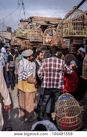 Birds In Cages At Marketplace In Afghanistan