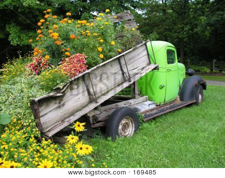 Flowers In Old Truck