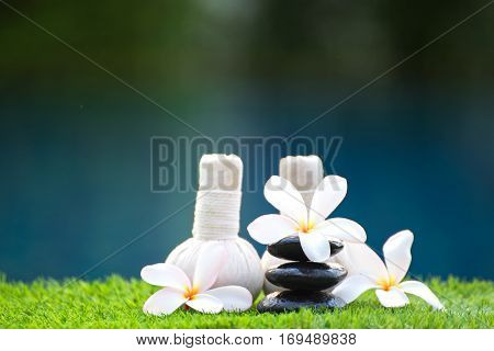 Spa treatment and product with flowers and water select and soft focus; Spa herbal compressing ball white frangipani flowers Thailand. soft and select focus Greenery tone 2017.