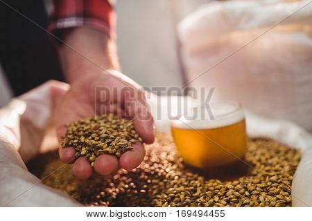 Cropped image of man holding barley by beer glass in sack at brewery