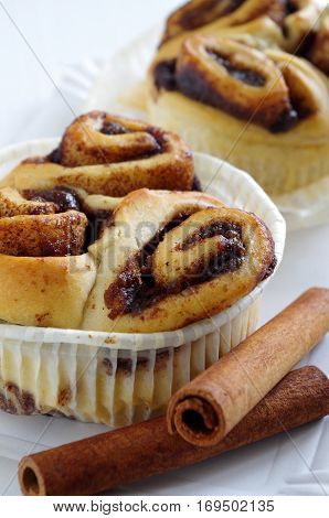 fresh tasty cinnamon bun in front of a white background