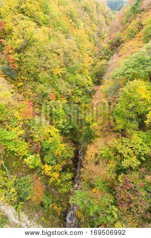 Naruko canyon