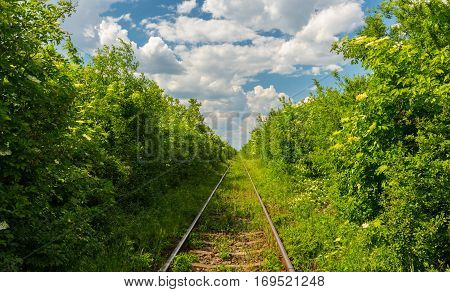 Old railroad, storm clouds and lush green vegetation in spring, in Europe
