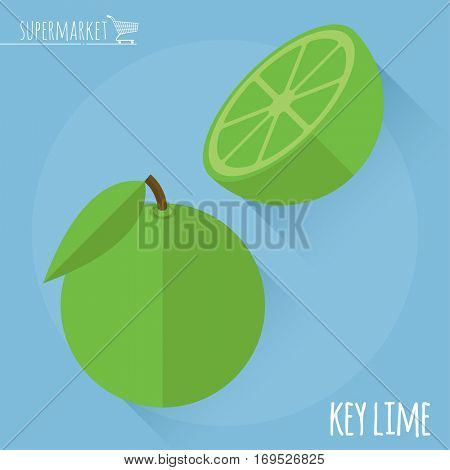 Flat design juicy fresh fruits icon vector template. Key lime