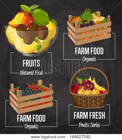Organic farm fruit set vector illustration. Natural sweet fruit, organic farming, vegan food store, retail farm product label. Healthy fruit advertising with avocado, pineapple, plum, kiwi, persimmon