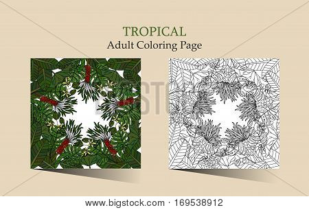 Tropic vector illustration. Adult antistress coloring page with tropical plants and flowers.