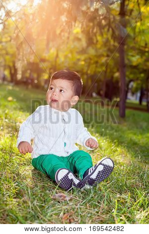 A Small Asian Child Plays In The Park Sitting On The Grass