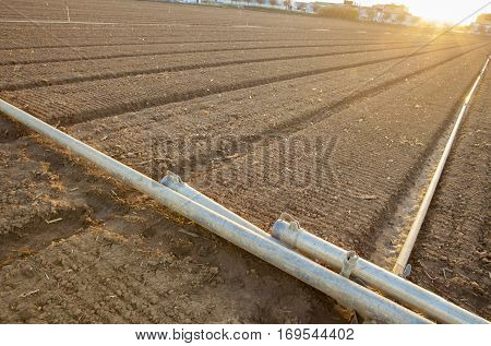 Irrigation Metal Pipes waiting to be laid over just cultivated field