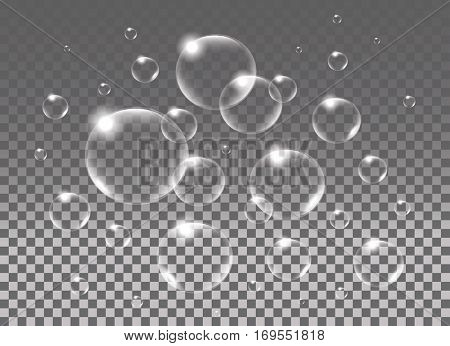 Realistic isolated Soap Bubbles. Vector Illustration.