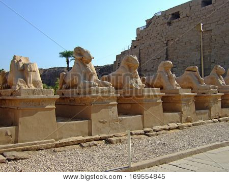 The Temple of Karnak on the Banks of the River Nile in Egypt 2008