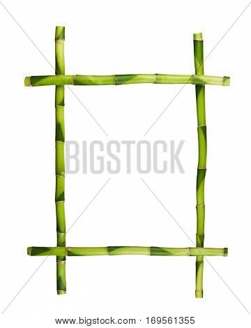 Green bamboo frame isolated on white background. Closeup.