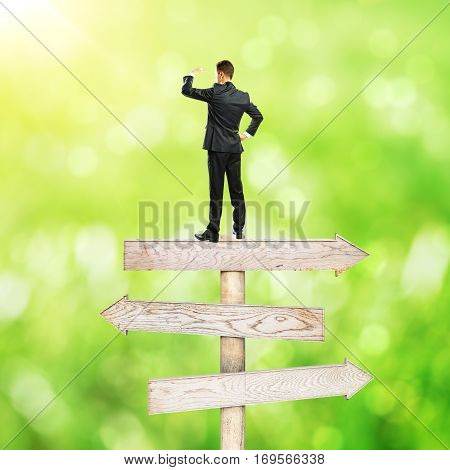 Businessman standing on abstract wooden road sign. Bright green background. Different direction concept