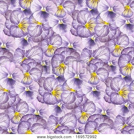 Violet pansy flower seamless pattern design.W atercolor illustration
