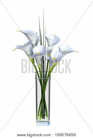 3D Rendering Calla Flowers On White