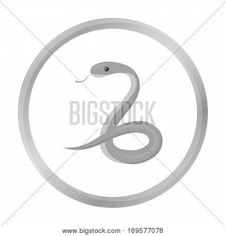Snake icon monochrome. Singe animal icon from the big animals monochrome.