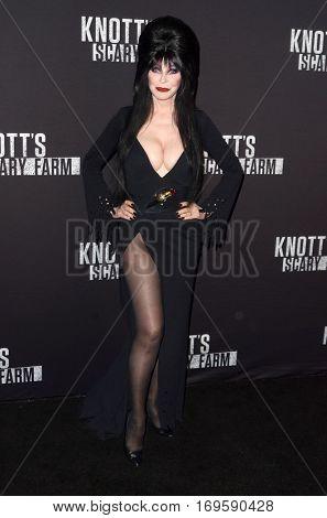 LOS ANGELES - SEP 30:  Elvira, aka Cassandra Peterson at the 2016 Knott's Scary Farm at Knott's Berry Farm on September 30, 2016 in Buena Park, CA