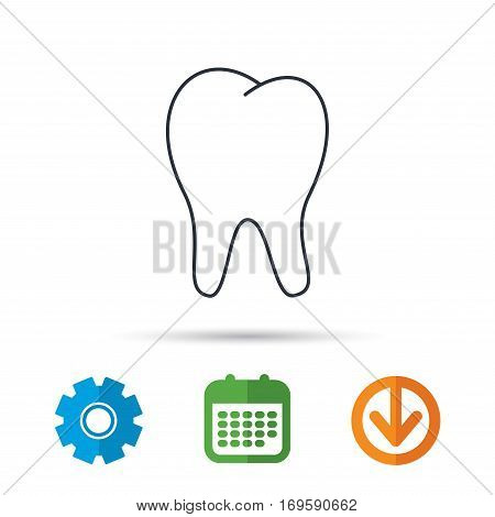 Tooth icon. Stomatology sign. Dental care symbol. Calendar, cogwheel and download arrow signs. Colored flat web icons. Vector