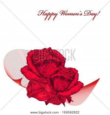 International Women's Day celebrated on March 8 greeting card. Red roses on white background. In some countries this holiday coincides with Mother's Day.