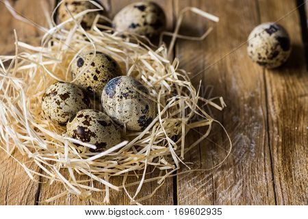 Quail eggs in a straw nest on wood background, kinfolk style, Easter, farming, country life concept