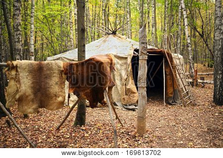 Drying animal skines near Chukot yurt with sleds in autumn forest