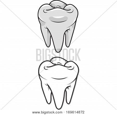 White teeth and outline. Vector isolated. Clip-art