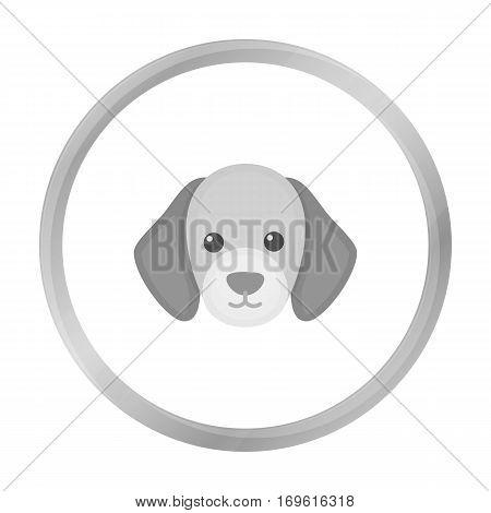 Dog muzzle vector illustration icon in monochrome design