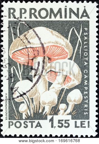 ROMANIA - CIRCA 1958: A stamp printed in Romania from the